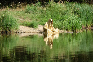 lower-austria-fish-pond-lake-guardians-of-time-by-manfred-kili-kielnhofer-contemporary-art-modern-sculpture-fine-photography-arts-ars-statue-7059
